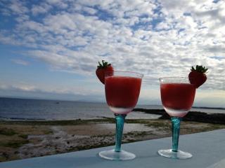 Beach House - Lower Largo vacation rentals