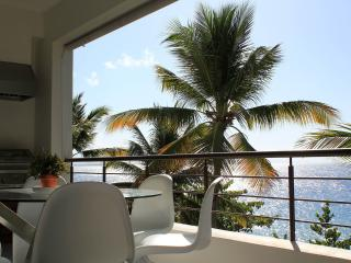 Luxury Apartment on Private Beach in Sosua - Sosua vacation rentals
