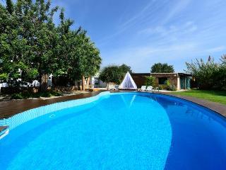 JOR80001 - Ibiza vacation rentals