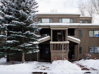Cozy condo with mountain views, shared hot tub, private deck - Ketchum vacation rentals