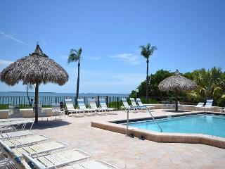 Palma Del Mar H-119   Updated, Ground Floor, Poolside,  Palma Del Mar Condo - Saint Petersburg vacation rentals