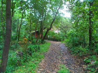 Hons Ranch - Alibaug vacation rentals
