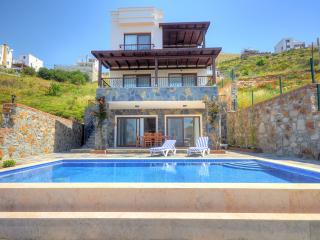 Mavi Villa - Kadikalesi vacation rentals