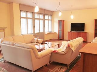 King George Apartment - Karlovy Vary vacation rentals