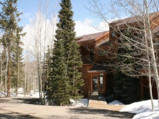 Mountain Serenity - Silverthorne vacation rentals