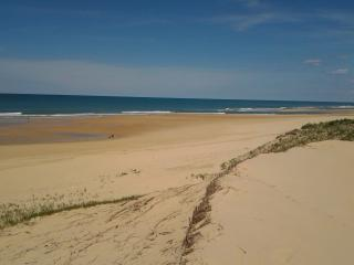 maison sur la dune - Saint-Julien-en-Born vacation rentals