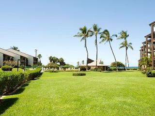 Hale Kamaole 1 Bedroom 120 - Kihei vacation rentals