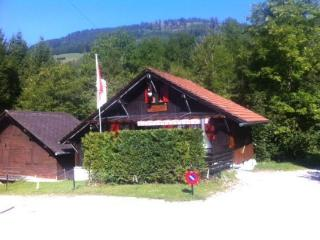 Charmant Petit Chalet*** - Charmey vacation rentals