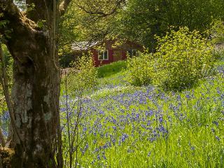 The Straw Cottage - Llandrindod Wells vacation rentals