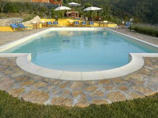 Il Conte - Massarosa vacation rentals