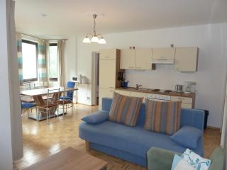 Bergstrasse 9 - Zell am See vacation rentals