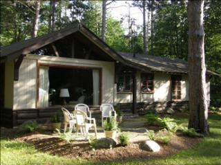 Council Tree 95100 - Harbor Springs vacation rentals