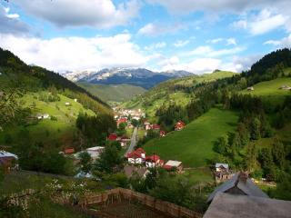 Bradul Chalet - Great base for outdoors - Bran vacation rentals