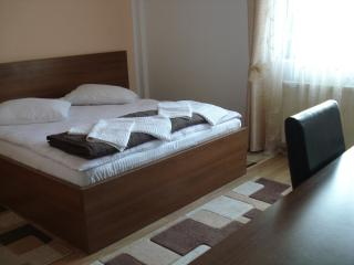 PENSION VALERIA VORONET - Vama vacation rentals