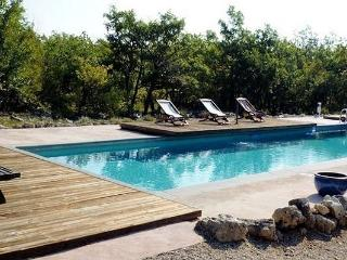 Designer house with 6 bedrooms, garden and pool - Lachau vacation rentals