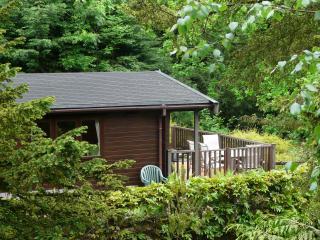 Mockerkin Tarn Luxury Log Cabin - Ambleside vacation rentals