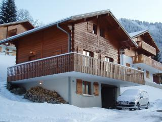 Chalet du Caire - Chatel vacation rentals
