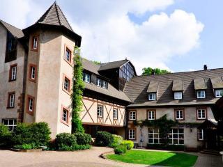 Moulin 16e Parc Naturel des Vosges du Nord - Bas-Rhin vacation rentals