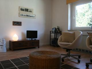 Cosy small flat in Cologne north - Cologne vacation rentals
