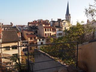 Terrasse du Vieux Lyon - Lyon vacation rentals