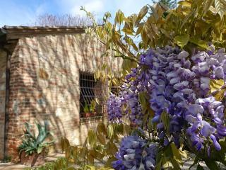 La Casina di Aki - Monteriggioni vacation rentals