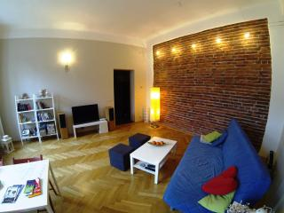 Sunny apart. 63 m2 in Center - Krakow vacation rentals