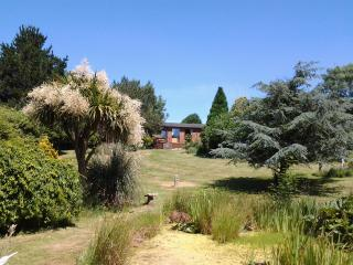Tudor Lodge with BBQ cabin - Liskeard vacation rentals