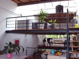Amazing spacious loft-family house - North Holland vacation rentals
