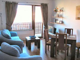Fabulous homely apartment - you'll love it! - Bansko vacation rentals