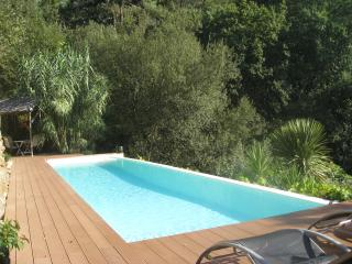 Cosy cottage, private 12m infinity pool, watrfalls - Coimbra vacation rentals