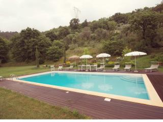 Valley Farmhouse in large park with swimming pool - Vicopisano vacation rentals