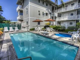 Makolea  Near the ocean and beach and Kona Town, comfortable condo - Kailua-Kona vacation rentals