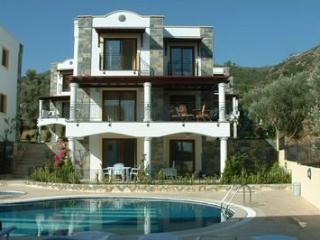 Villa Alemdar - Torba vacation rentals
