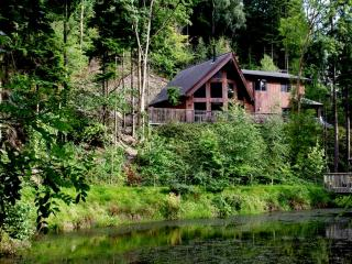 Niagra lodge - Llangollen vacation rentals