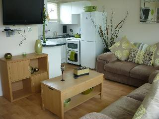 Holiday Chalet by the Beach on Kent Coast - Kent vacation rentals