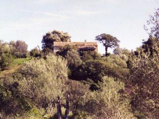 Real Sardinian Farm&Guesthouse Stazzu la Capretta - Olbia vacation rentals