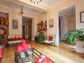 Cosy Apartment in the Center - Tbilisi vacation rentals