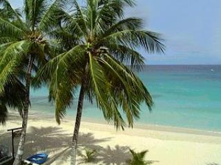 Heywood Beach 0.5 km away from Apartment - LeMarida Suites.  Walk to Beaches & Shopping. - Speightstown - rentals