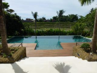 Wonderful ricefield view villa in Canggu Bali - Canggu vacation rentals