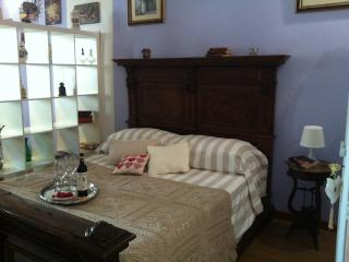 Centrale nel cuore di Firenze - Florence vacation rentals
