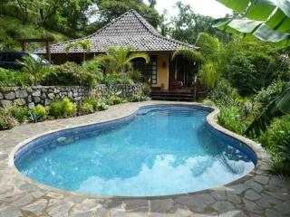 Bali Style Home Overlooking Tree Canopy - Atenas vacation rentals