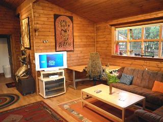 Aspafell - Thingvellir vacation rentals