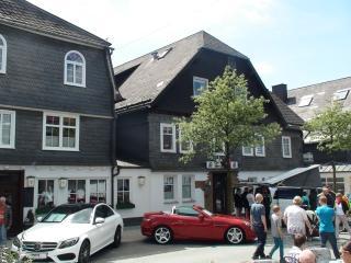 Ferienwohnung Zentrum Winterberg - Winterberg vacation rentals