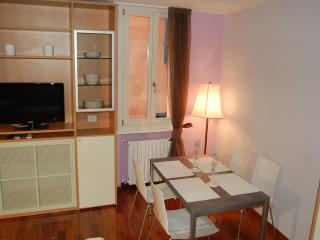 ALBIROLI APARTMENT Charming and quiet city centre - Emilia-Romagna vacation rentals