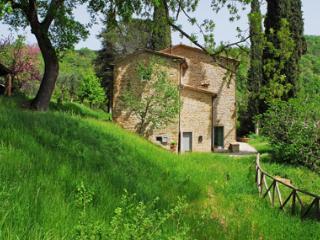 La Doccia- Casa del Camino - Anghiari vacation rentals