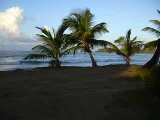 Charming condo Las Terrenas Appartment - Las Terrenas vacation rentals