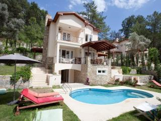 Gocek Vineyard Villas - Gocek vacation rentals