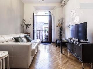 CENTRE, JUST WALKING&ENJOYING - Madrid vacation rentals