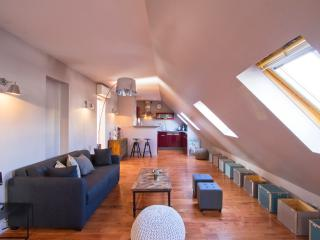Outstanding 3 Bedroom Apartment in Paris - Paris vacation rentals