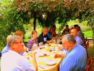 poderi in chianti intero borgo - Tavarnelle Val di Pesa vacation rentals